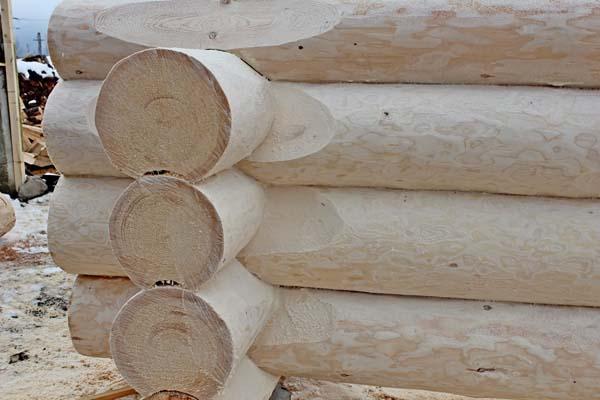 Case Di Tronchi Di Legno : Case di tronchi case con struttura di legno woodbusinessportal.com