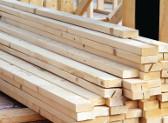 Panama se enfrenta al trafico ilegal de madera