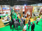 $2.4tn worth Expo 2020 Dubai construction projects to drive demand for wood industry