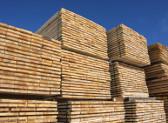 La crescita piu alta degli ultimi 70 anni per la produzione dei principali prodotti in legno