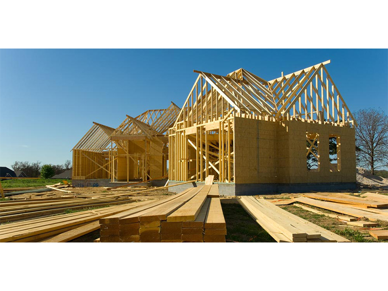 Why is Wood the Number 1 Ally for Eco-friendly and Human-friendly Building Constructions