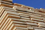 Oroszország tekinteni fog részvények a nyersfa exportra
