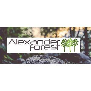 ALEXANDER FOREST SRL